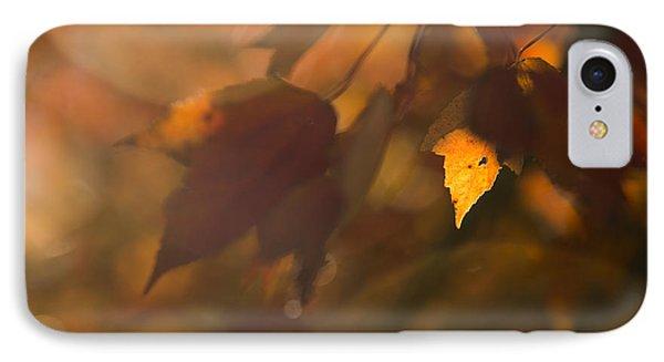 Autumn Leaf In Sunshine IPhone Case