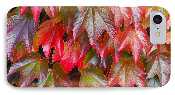 Autumn Leaves 01 IPhone Case