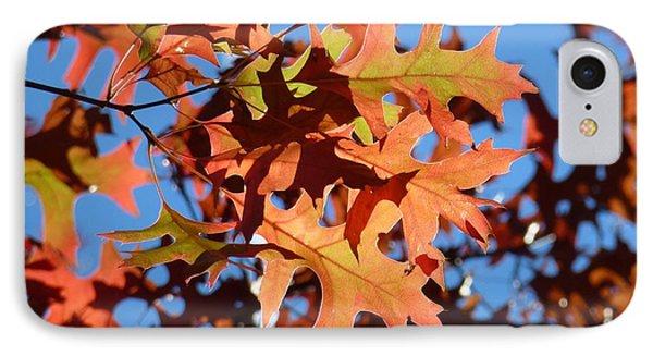 Autumn Leaves 17 Phone Case by Jean Bernard Roussilhe