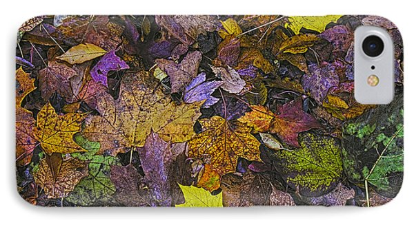 Autumn Leaves At Side Of Road IPhone Case