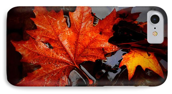 Autumn Leaves In Tumut IPhone Case by Lexa Harpell
