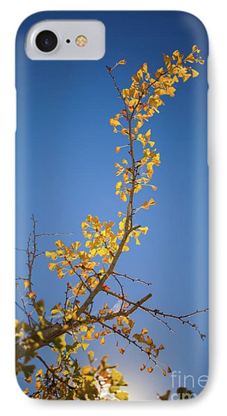 IPhone Case featuring the photograph Autumn Leaves Is Changing Color During October Fall Season With  by Jingjits Photography