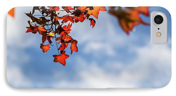 IPhone Case featuring the photograph Autumn Leaves  by Jingjits Photography