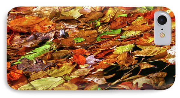 IPhone Case featuring the photograph Autumn Leaves by Mitch Cat