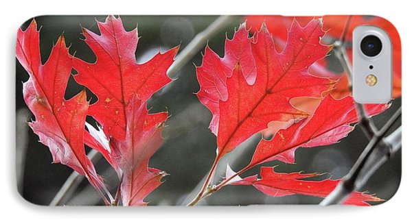 IPhone Case featuring the photograph Autumn Leaves by Peggy Hughes