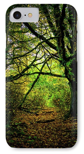 IPhone 7 Case featuring the photograph Autumn Light by David Patterson