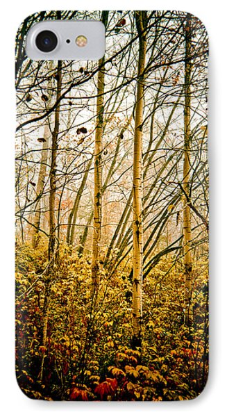 autumn Lines IPhone Case by Maggie Terlecki
