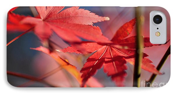 Autumn Maple Phone Case by Kaye Menner