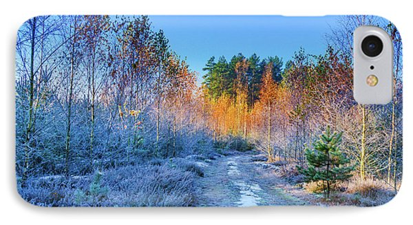 IPhone Case featuring the photograph Autumn Meets Winter by Dmytro Korol