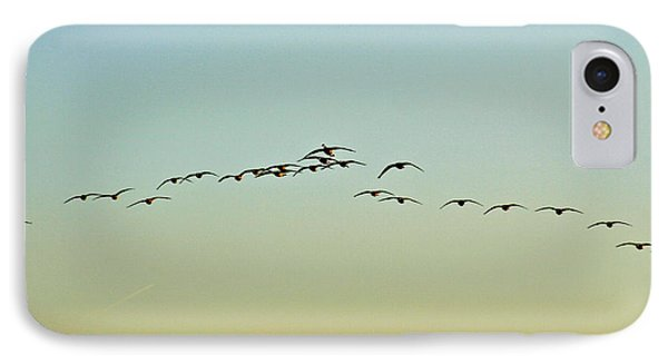 Autumn Migration IPhone Case by Sean Griffin