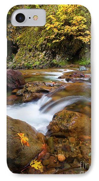 IPhone Case featuring the photograph Autumn Moment by Mike Dawson