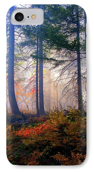 Autumn Morning Fire And Mist Phone Case by Diane Schuster