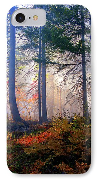 Autumn Morning Fire And Mist IPhone Case by Diane Schuster