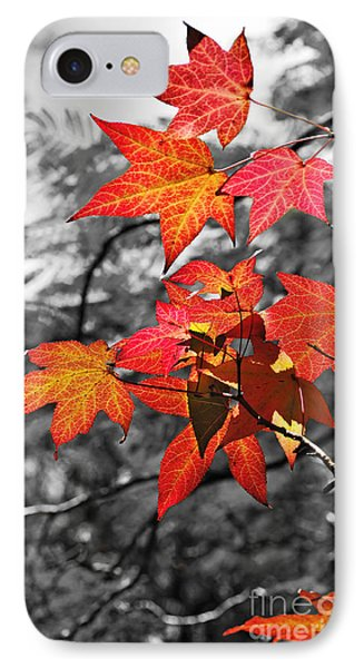 Autumn On Black And White Phone Case by Kaye Menner