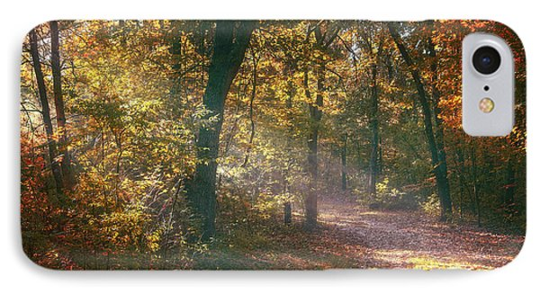 Autumn Path IPhone Case by Scott Norris