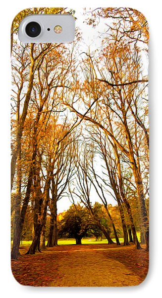 Autumn Path IPhone Case by Svetlana Sewell