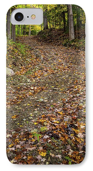 IPhone Case featuring the photograph Autumn Pathway by Dale Kincaid