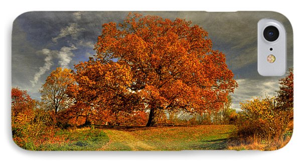 Autumn Picnic On The Hill Phone Case by Lois Bryan
