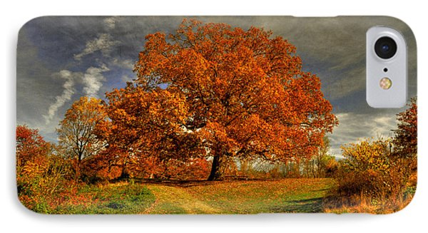 Autumn Picnic On The Hill IPhone Case by Lois Bryan