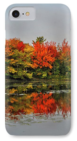 Autumn Portrait IPhone Case by Kathleen Sartoris