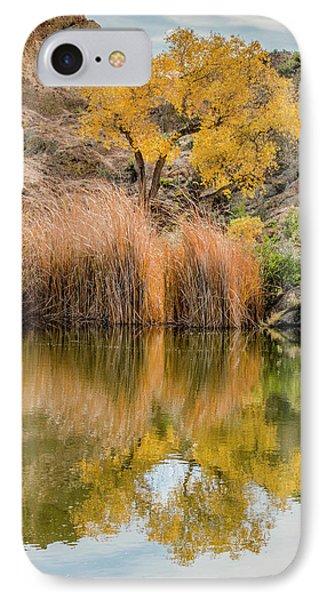 Autumn Reflection At Boyce Thompson Arboretum IPhone Case