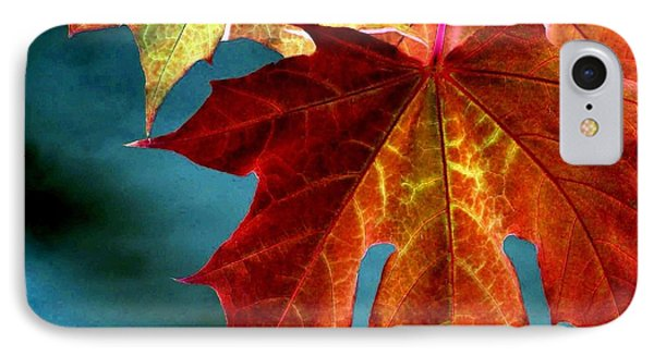 IPhone Case featuring the photograph Autumn Regalia by Will Borden