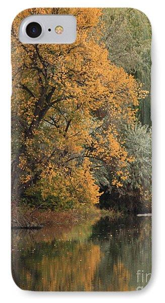 Autumn Riverbank Phone Case by Carol Groenen