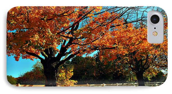 IPhone Case featuring the photograph Autumn Rows by Joan  Minchak