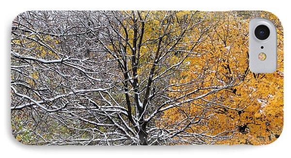 IPhone Case featuring the photograph Autumn Snow by Doris Potter