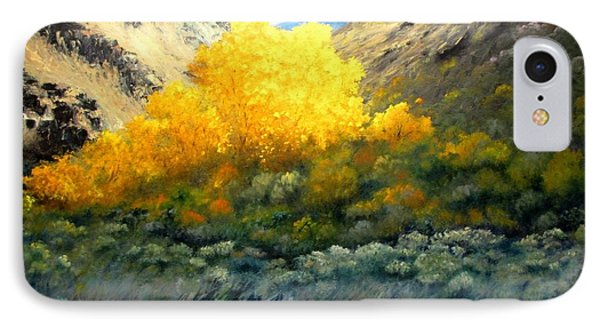 Autumn-southhills IPhone Case