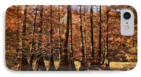 IPhone Case featuring the photograph Autumn Splendor At Lake Murray by Tamyra Ayles