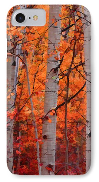 Autumn Splendor IPhone Case by Don Schwartz
