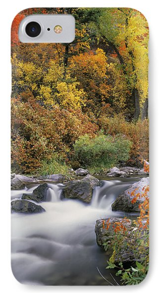 Autumn Splendor IPhone Case by Leland D Howard