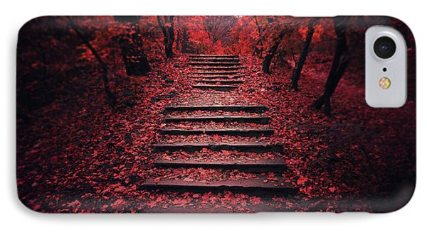 Autumn Stairs IPhone Case by Zoltan Toth