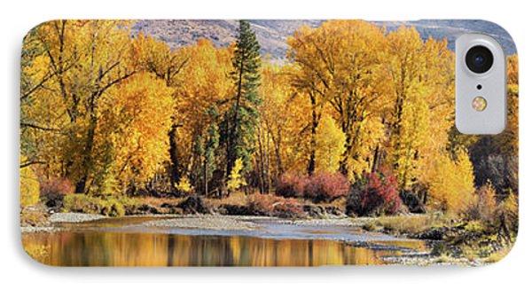 Autumn Stream IPhone Case by Mary Jo Allen