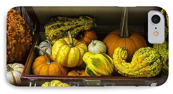 Autumn Suitcase IPhone Case