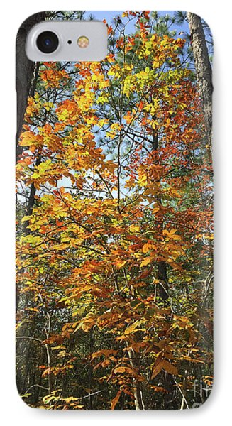 Autumn Sunday IPhone Case