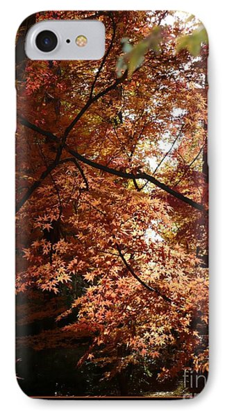 Autumn Sunshine Poster Phone Case by Carol Groenen