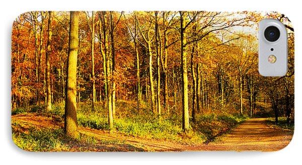 Autumn Phone Case by Svetlana Sewell