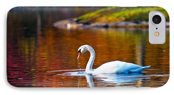 Autumn Swan Lake IPhone Case