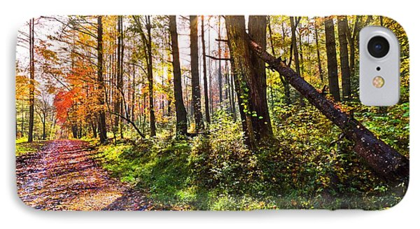 Autumn Trail Phone Case by Debra and Dave Vanderlaan