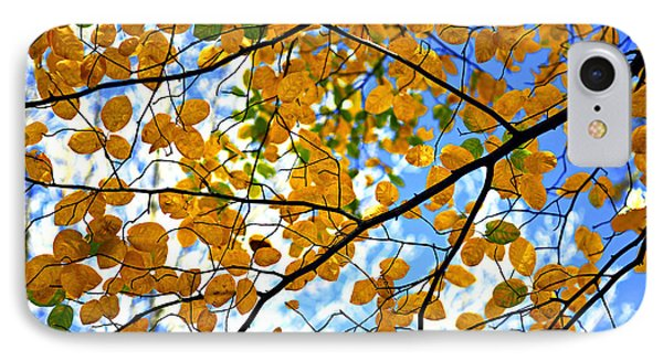 Autumn Tree Branches IPhone Case