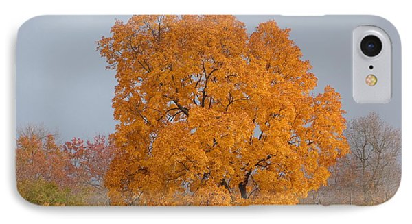IPhone Case featuring the photograph Autumn Tree by Donald C Morgan