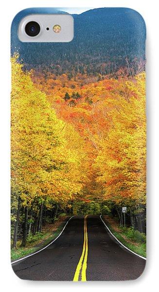 Autumn Tree Tunnel IPhone Case