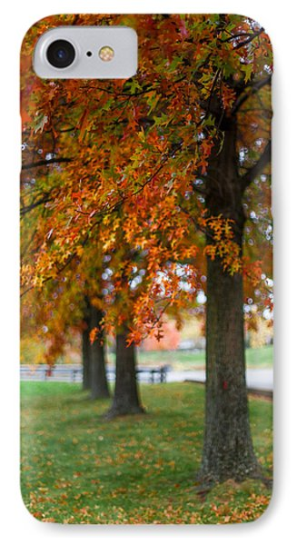 Autumn Trees In A Row IPhone Case by April Reppucci