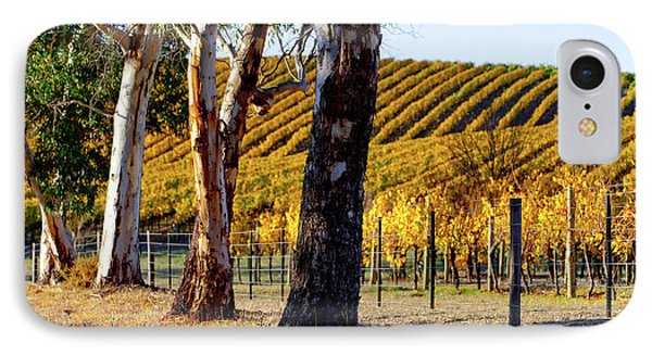 IPhone Case featuring the photograph Autumn Vines by Bill Robinson