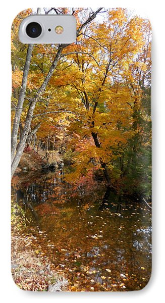 Autumn Vintage Landscape 5 IPhone Case by Lanjee Chee