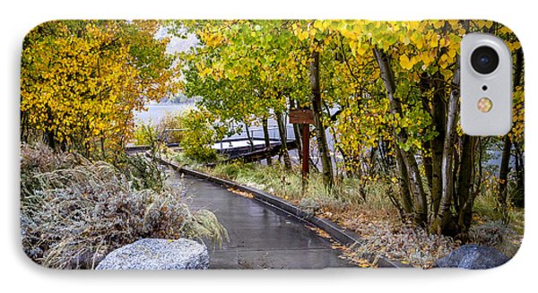 Autumn Walkway IPhone Case by Cat Connor