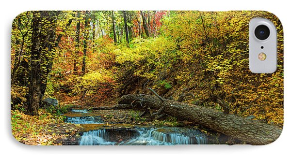 IPhone Case featuring the photograph Autumn Waterfall by Anthony Citro