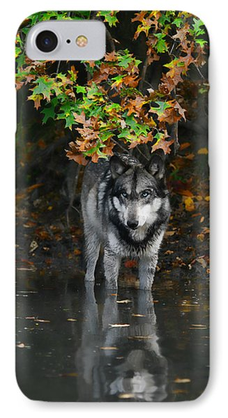 IPhone Case featuring the photograph Autumn Wolf by Shari Jardina
